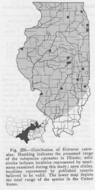 Illinois map of distribution of massauga
